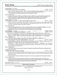Executive Summary Resume Enchanting Resume Executive Summary Example Resumelayout