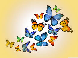 desktop wallpaper butterfly. Wonderful Desktop Standard 43 Inside Desktop Wallpaper Butterfly