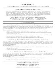 Resume Format Marketing Director Of Sales Resume Sample Online ...