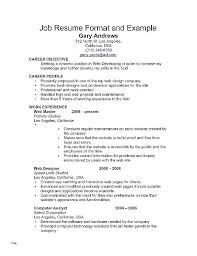 Professional Resume Templates 2015 Social Work Resume Examples Social Work Resume Skills Social Work