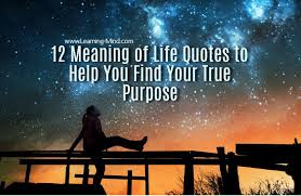 40 Meaning Of Life Quotes To Help You Find Your True Purpose Fascinating Quotes With Meaning