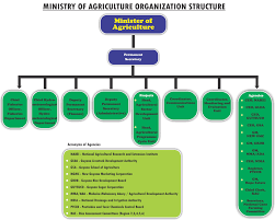 Organization Structure Ministry Of Agriculture