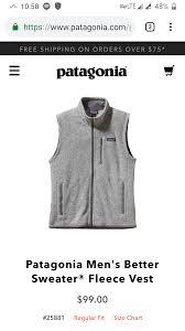 W2c Patagonia Vest For Summer Internship Couturereps