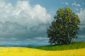 canola fields an advanced oil painting lesson on dvd