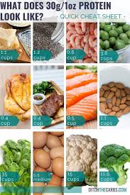 Portion Control What Does 30g Protein Look Like Charts