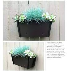 plant holders for wall indoor wall plant holders wall indoor wall plant hangers