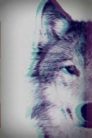 wolf wallpaper iphone tumblr. Wonderful Wolf There Are Already Thousand Enthralling Inspiring And Awesome Images Tagged  With Wolf In Wolf Wallpaper Iphone Tumblr