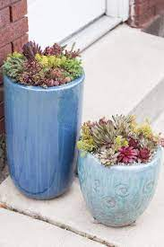use pot feet for succulent container