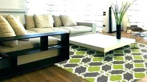 rug cleaners rugs area vinyl furniture for richmond va in cleaning medium size of oriental cleani