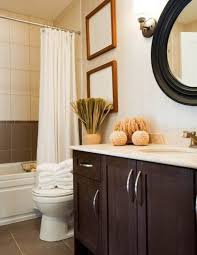 Renovating Small Bathroom Bathroom Less Is More Small Amazing Renovating Small Bathrooms