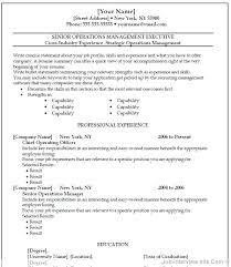 Resume Format In Word Adorable Resume Format In Word 28 Sample Professional Resume