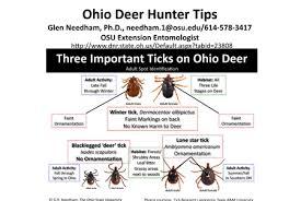 Tick Identification Chart Ticks In Ohio