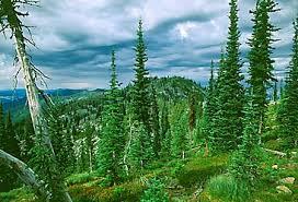 Selway-Bitterroot Wilderness, Idaho/Montana