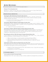 Good Resume Titles Magnificent Good Resume Titles From Catchy Resume Titles Titles For Resumes Best