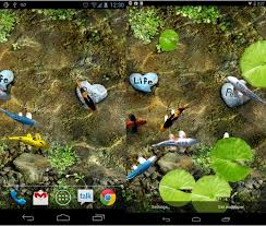 free download koi live wallpaper for android tablet. koi free live wallpaper download for android tablet