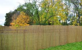 Chain Link Fence Covering Ideas