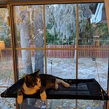 <b>Cat Hammock Bed Window Perch Seat</b> Sunny for Lager <b>Cats</b> ...