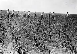「1945年 - 瑞穂村開拓団集団自決」の画像検索結果