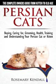 Kitten Socialization Chart Persian Cats The Complete Owners Guide From Kitten To Old