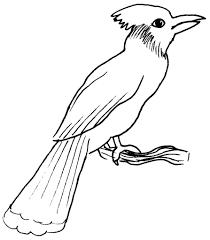 119 Dessins De Coloriage Oiseau Imprimer Sur Laguerche Com Page 10