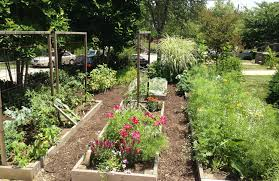 a front yard garden with flowers and trellises