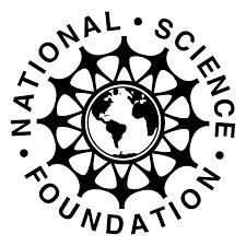 NSF Logo PNG Transparent & SVG Vector - Freebie Supply