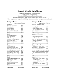 Weight Gain Diet Template Free Download