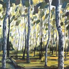 sunlit forest with birch trees abstract green and blue leaves forest floor is green