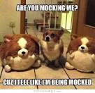 mocked