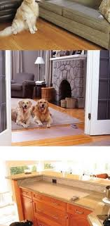 Dining Room Winsome Keep Dogs Off Couch 33 Best Spray To 89 Sofa