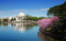 Image result for DC attractions
