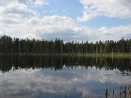 Самые необычные озера мира На Алтае расположено одно из самых необычных озер загадка которого не раскрыта до сих пор Все дело в том что в этом озере нет ни травинки