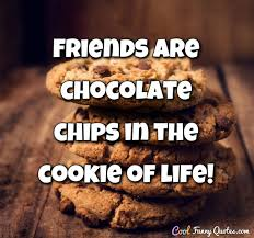 Cookie Quotes Best Friends Are Chocolate Chips In The Cookie Of Life
