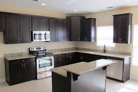 Granite With Cream Cabinets Kitchen Microwave Cabinet Oak Nevada House Oak Kitchen Cabinets