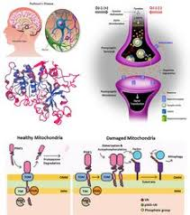 95 Best Web Features Images Flow Cytometry Blackberry