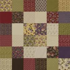 The Easiest Quilt Ever | AllPeopleQuilt.com & Audra's Iris Garden Collection Adamdwight.com