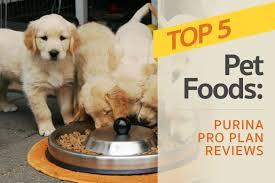 Purina Pro Plan Reviews The Brands Top 5 Pet Foods