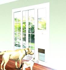 glass dog doors doors with doors sliding glass dog door pet doors pet doors for sliding glass dog doors