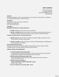 Internship Resume Examples Top 10 Objective And Mft Intern