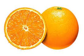 صادرات پرتقال تامسون | بازاریابی و فروش پرتقال صادراتی - شرکت ماهان |  مشاوره صادرات