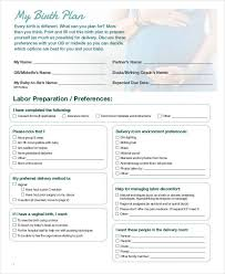 Easy Birth Plan Care Home Care Plans Templates Awesome Care Home Care Plans