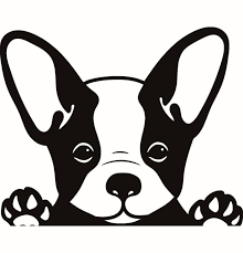 The collection contains only the images indicated in the list below. Bulldog Clipart French Bulldog Bulldog French Bulldog Transparent Free For Download On Webstockreview 2020