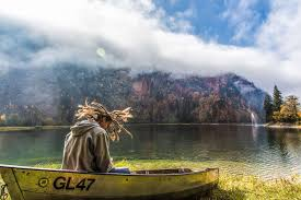 canoe fog lake landscape man mist outdoors person river trees water 4k wallpaper and background