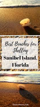 Where To Find The Best Beaches For Shelling On Sanibel