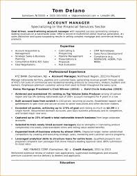 9 Account Manager Resumes Besttemplates