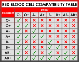 Universal Blood Type Chart Rh Factor Blood Types Chart Blood Group Information