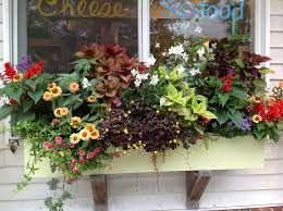 Easy Container Made For Shade  Southern LivingContainer Garden Ideas For Shade