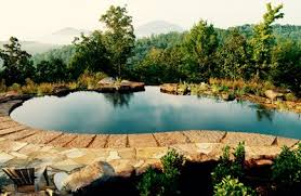natural looking in ground pools. Beautiful Looking Intended Natural Looking In Ground Pools I