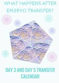 what happens after embryo transfer day 3 day 5 transfer calendar