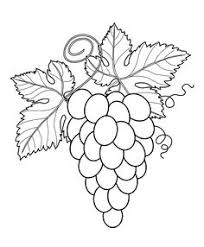Small Picture Strawberry with eyes Fruits coloring pages simple for kids